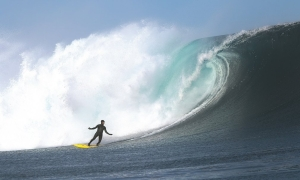 surf dechets