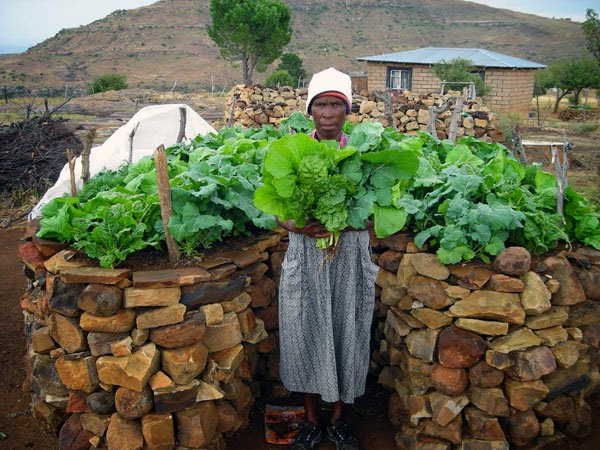 The Keyhole Garden A family garden to combat malnutrition