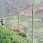 ITYF Peru