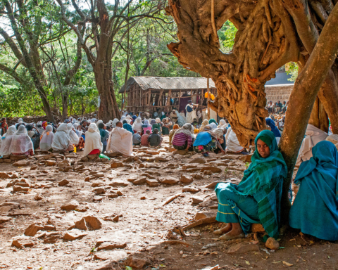 Credit: magazine.africageographic.com