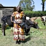 Kenya_Livelihoods fr