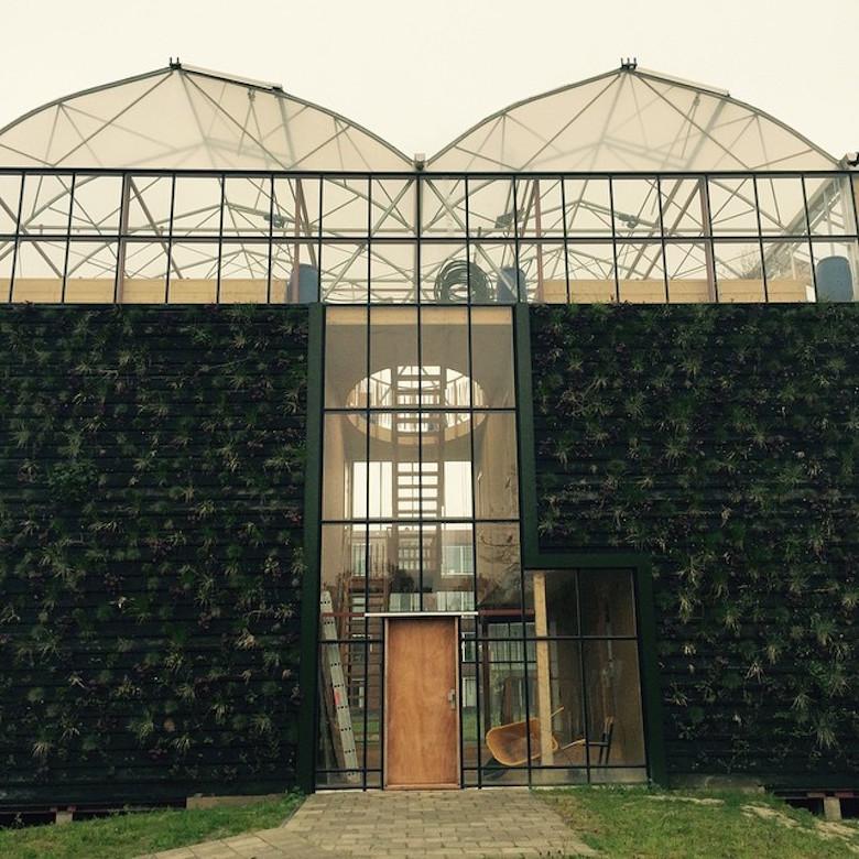GreenhouseHome1